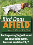 Bird Dogs Afield